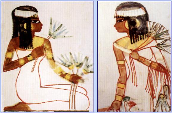 dessin de femmes tombe du scribe menna