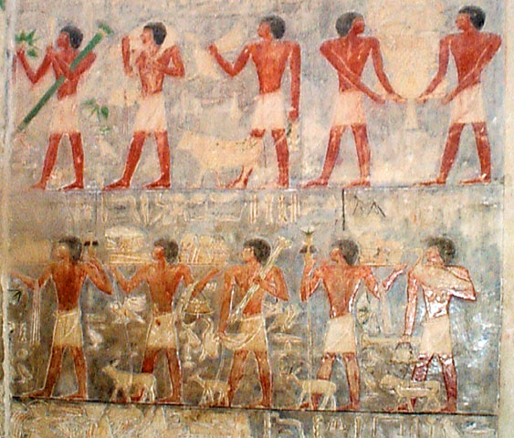 peintures dans la tombe Ptah-hotep